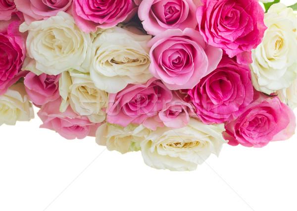 Foto stock: Buquê · fresco · rosas · rosa · branco · fronteira