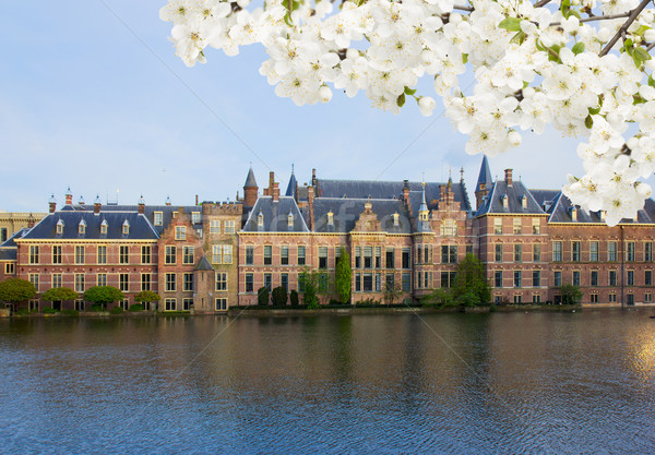 голландский парламент Нидерланды весны цветы дома Сток-фото © neirfy