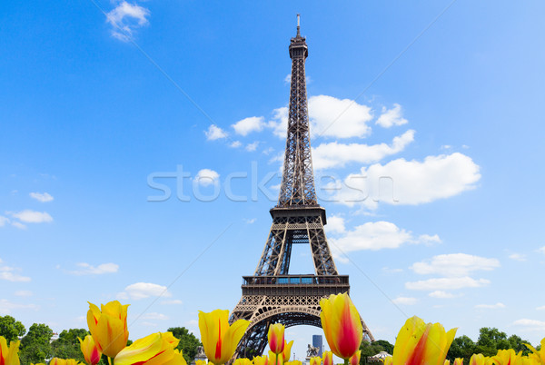 Eiffel tur nehir Cityscape ünlü Eyfel Kulesi Stok fotoğraf © neirfy