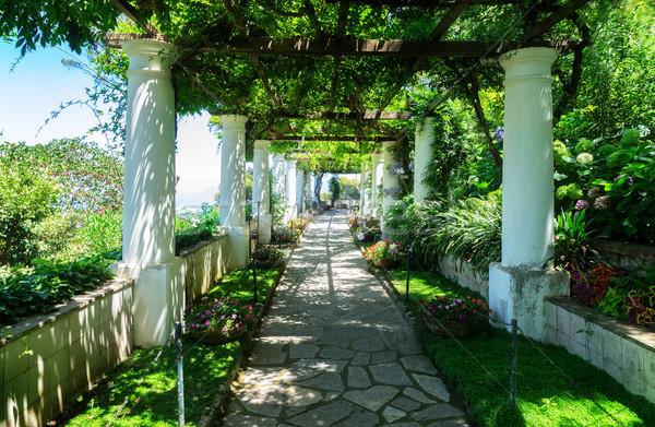 島 イタリア 美しい 庭園 自然 ストックフォト © neirfy
