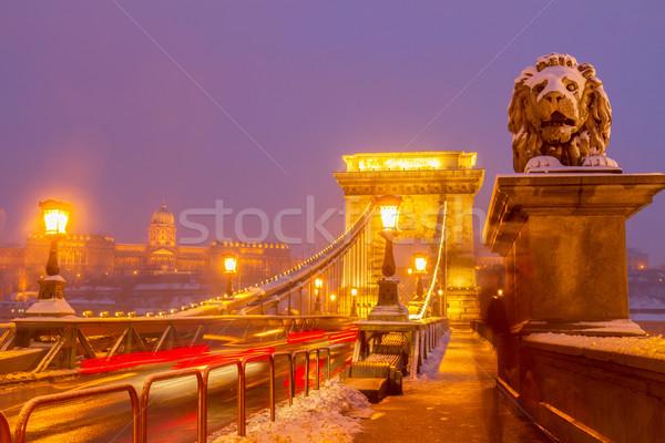 Stock photo: Chain Bridge at night,  Budapest, Hungary