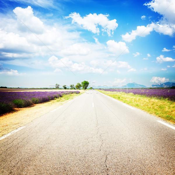 Ver estrada rural verão dia França retro Foto stock © neirfy