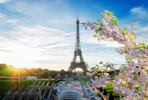 Eiffel tour Parigi Torre Eiffel sunrise primavera Foto d'archivio © neirfy