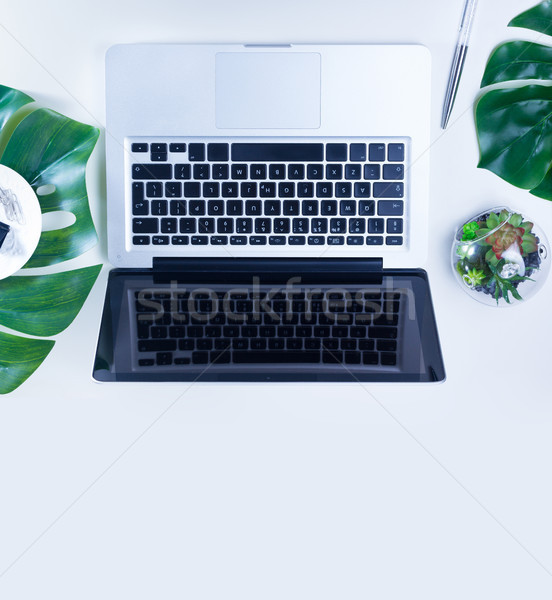 Ministerstwo spraw wewnętrznych laptop zielone liście biały działalności Zdjęcia stock © neirfy