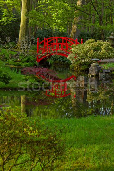 Japanese garden with bridge Stock photo © neirfy