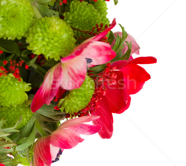 bouquet with red anemone flowers close up Stock photo © neirfy