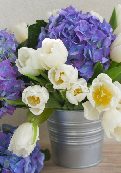 posy  of white tulips and blue hortensia flowers Stock photo © neirfy