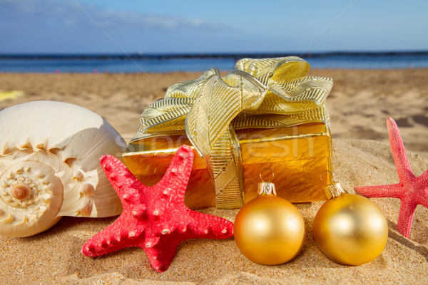 Сток-фото: Рождества · подарки · пляж · снарядов · Starfish