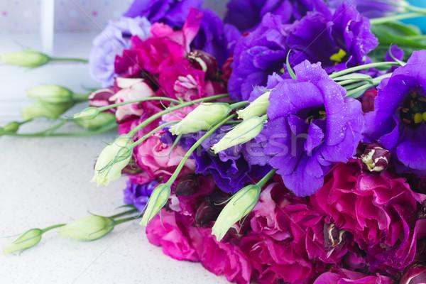 Mor leylak rengi çiçekler tablo doğa Stok fotoğraf © neirfy
