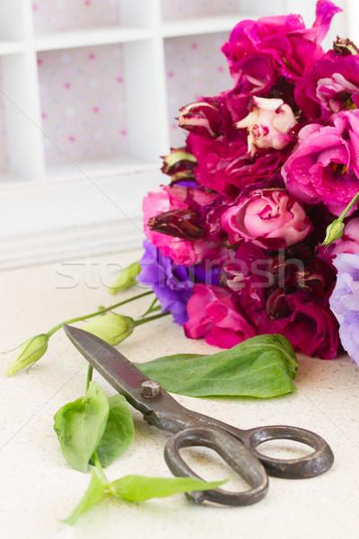 Mor leylak rengi çiçekler taze makas Stok fotoğraf © neirfy