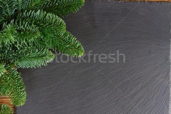 Karácsony friss örökzöld fa ágak fenyőfa Stock fotó © neirfy