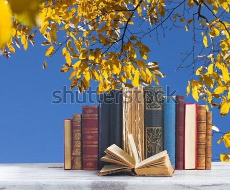 Foto d'archivio: Libri · occhiali · tavolo · in · legno · desktop · caduta