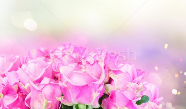 фиолетовый роз свежие bokeh Сток-фото © neirfy