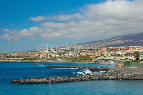 Tenerife Espagne panoramique vue plage montagne Photo stock © neirfy
