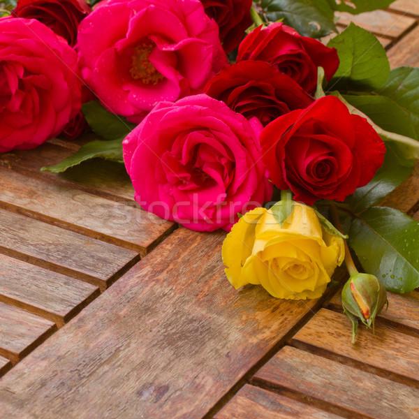 pile of fresh garden roses Stock photo © neirfy