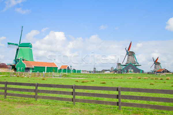 dutch windmills with in Zaanse Schans Stock photo © neirfy