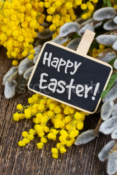 Happy easter with mimosa flowers Stock photo © neirfy