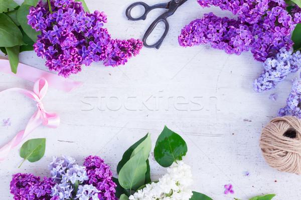 Taze çerçeve çiçekler beyaz Stok fotoğraf © neirfy