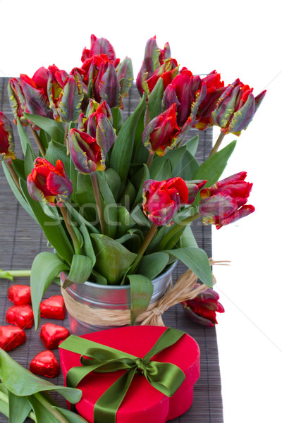 tulip flowers in pot with gift box Stock photo © neirfy