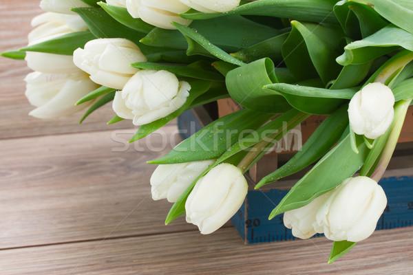 Stock foto: Weiß · Tulpen · frischen · Holz