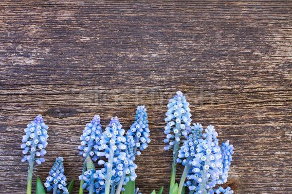 Stok fotoğraf: çiçekler · tablo · taze · mavi · ahşap · masa