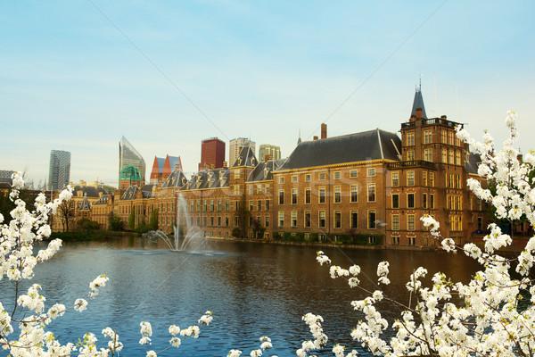 голландский парламент Нидерланды мнение пруд весны Сток-фото © neirfy