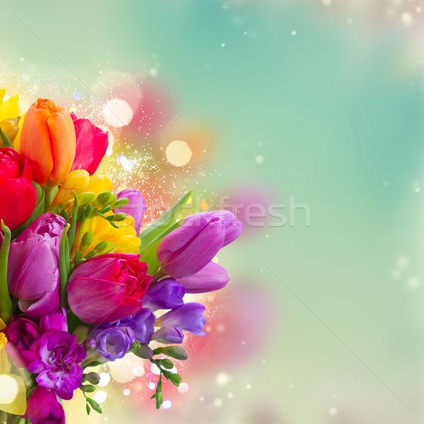 Bouquet hellen Frühlingsblumen gefärbt blau Stock foto © neirfy