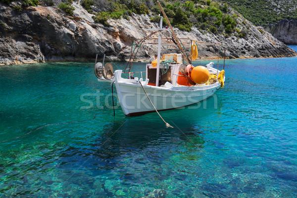 Belo ilha flutuante água pormenor Foto stock © neirfy
