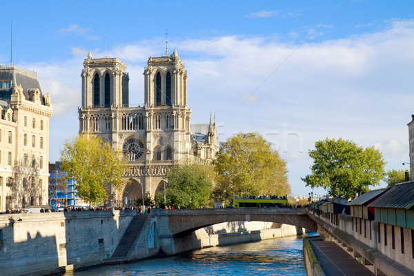 Notre Dame cathedral church, Paris, France Stock photo © neirfy