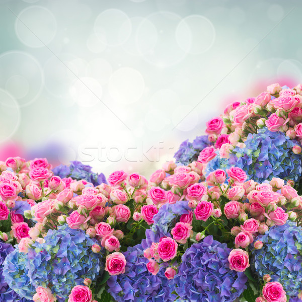 bunch of roses and  hortensia flowers Stock photo © neirfy