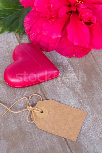 гибискуса цветы два розовый сердцах сердце Сток-фото © neirfy