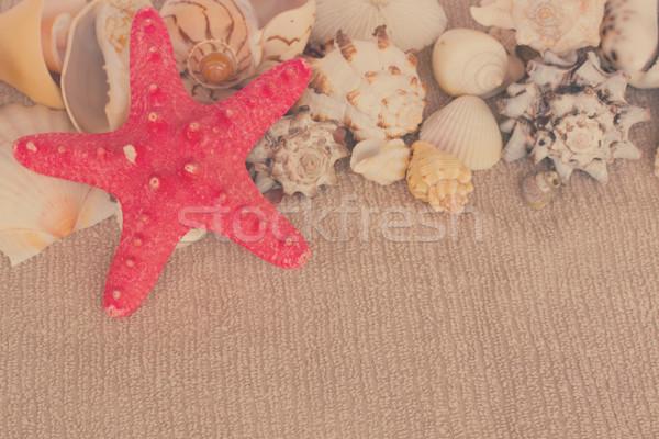 Starfish serviette espace de copie rétro nature Photo stock © neirfy