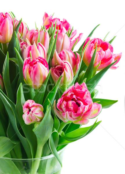 Virágcsokor rózsaszín tulipánok fényes friss közelkép Stock fotó © neirfy
