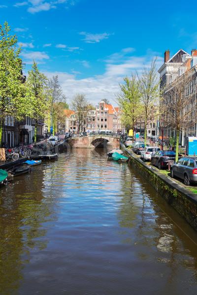 Huizen Nederland nederlands brug kanaal landschap Stockfoto © neirfy