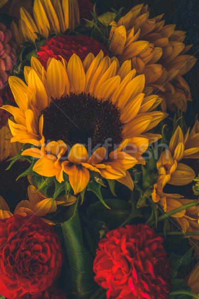 ダリア ひまわり 花 花束 レトロな ストックフォト © neirfy