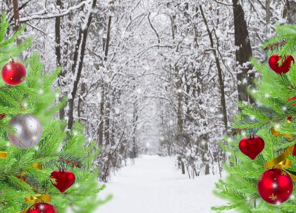 Foresta decorato evergreen alberi modo inverno Foto d'archivio © neirfy