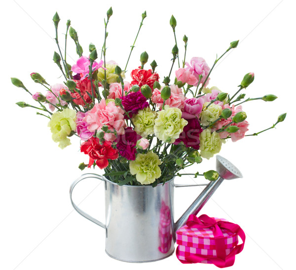Stock photo: bunch of carnation flowers with gift box
