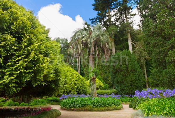 庭園 ポルトガル 夏 日 水 ストックフォト © neirfy