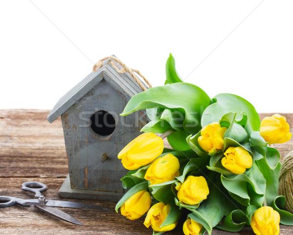 Yellow tulips  with birdcage  Stock photo © neirfy