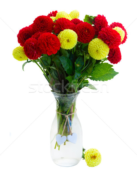 Stock photo: Dahlia flowers bouquet