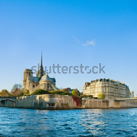 island Isle de la Cite, Paris, France Stock photo © neirfy