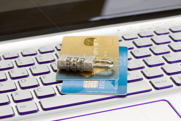 internet transaction security concept Stock photo © neirfy