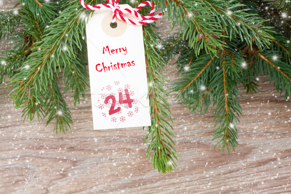 evergreen tree with christmas tag Stock photo © neirfy