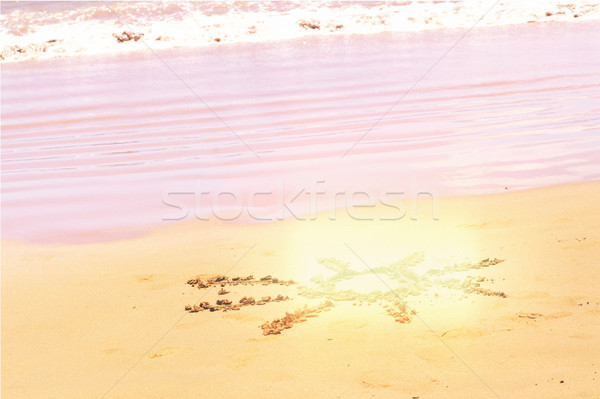 Sol playa de arena instagram retro agua Foto stock © neirfy