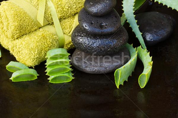 Aloés estância termal massagem pedras torre toalhas Foto stock © neirfy