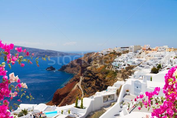 Tradicional griego pueblo mar Grecia flores Foto stock © neirfy