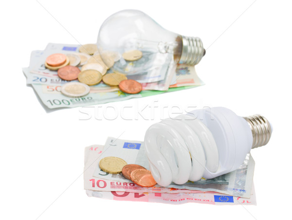 energy saving and normal   bulbs on euro Stock photo © neirfy