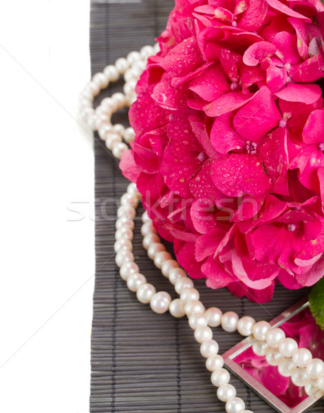 pink hortensia flowers and pearls close up Stock photo © neirfy