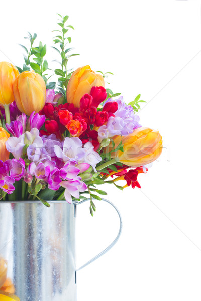 freesia and tulip flowers Stock photo © neirfy