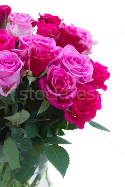 Buquê fresco rosa rosas magenta Foto stock © neirfy